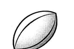 Rugby results and fixtures